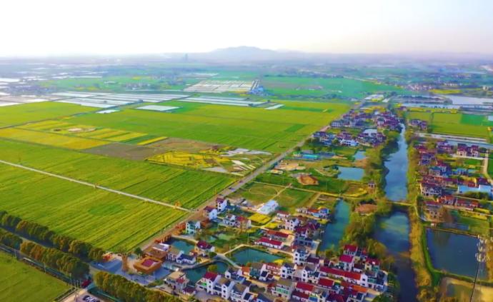 """徐華勤代表:深化探索宅基地""""三權分置"""",提升鄉村空間價值"""