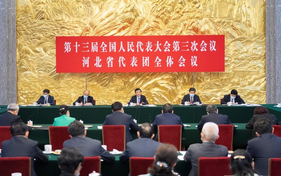 5月22日,十三届全国人大三次会议河北代表团举行全体会议。 新华社 图