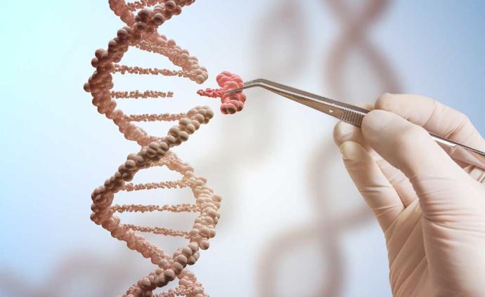 一图解读转基因技术应用领域:生产胰岛素、乙肝疫苗