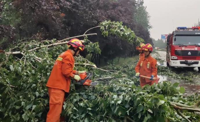 山東聊城狂風吹倒數十棵大樹,消防人員緊急救援疏通道路