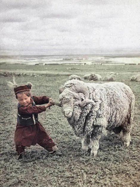 """""""跟我走"""",新疆,1960年。"""