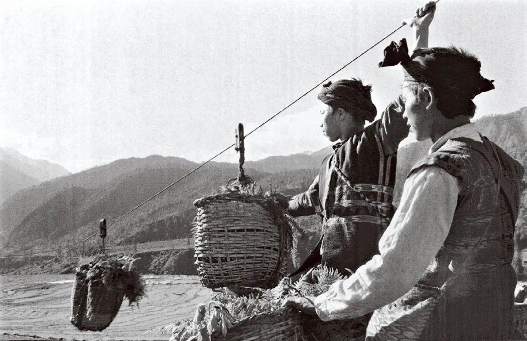 呷绕生产队用溜索把高山绿肥送到田间,察隅,1975年。
