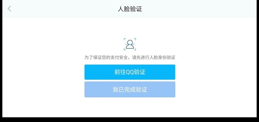 支付环节人脸识别验证界面。