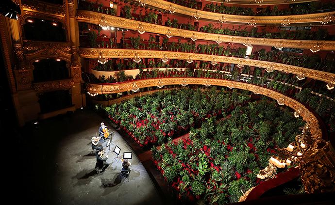 """早安·世界 西班牙剧院举办特殊音乐会,观众席""""坐满""""植物"""