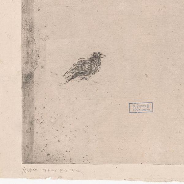《鸟的世相》
