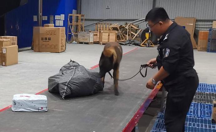 警犬边境立功:已查缉拟输送境外诈骗窝点作案工具15万余件
