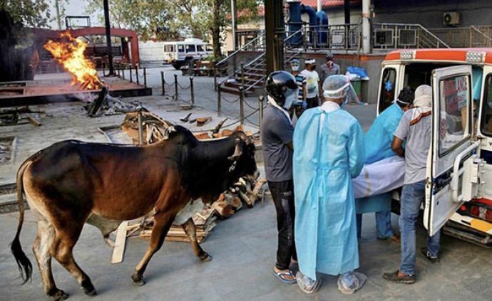 疫情下的印度|从印度制造到自立印度,转向保护主义的借口?