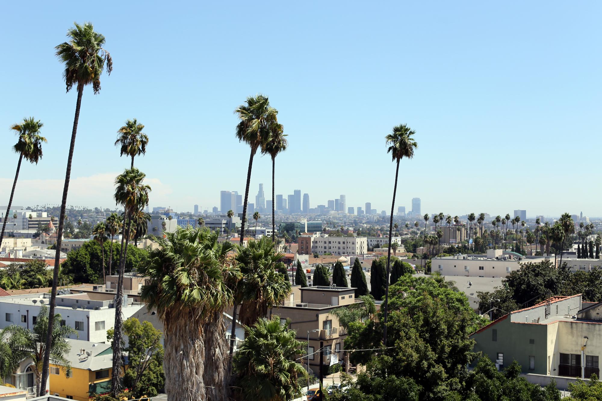站在张爱玲故居楼顶瞭望洛杉矶市中心。 朱晓闻 摄