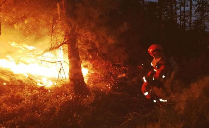 内蒙古大兴安岭毛河林场火灾外线明火被扑灭