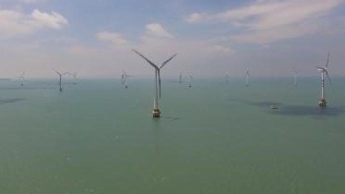 中国单机容量最大海上风机并网发电,年减燃煤消耗1.3万吨