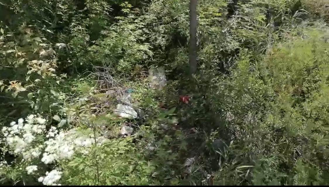 警方发现农药瓶玻璃碎片的山坡距离靳金保家直线距离不到50米。澎湃新闻记者 陈雷柱 图