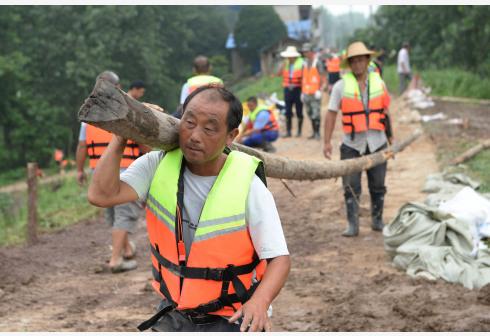 7月14日,长沙乡当地村民在发生管涌的圩堤处搬运木桩。新华社 图