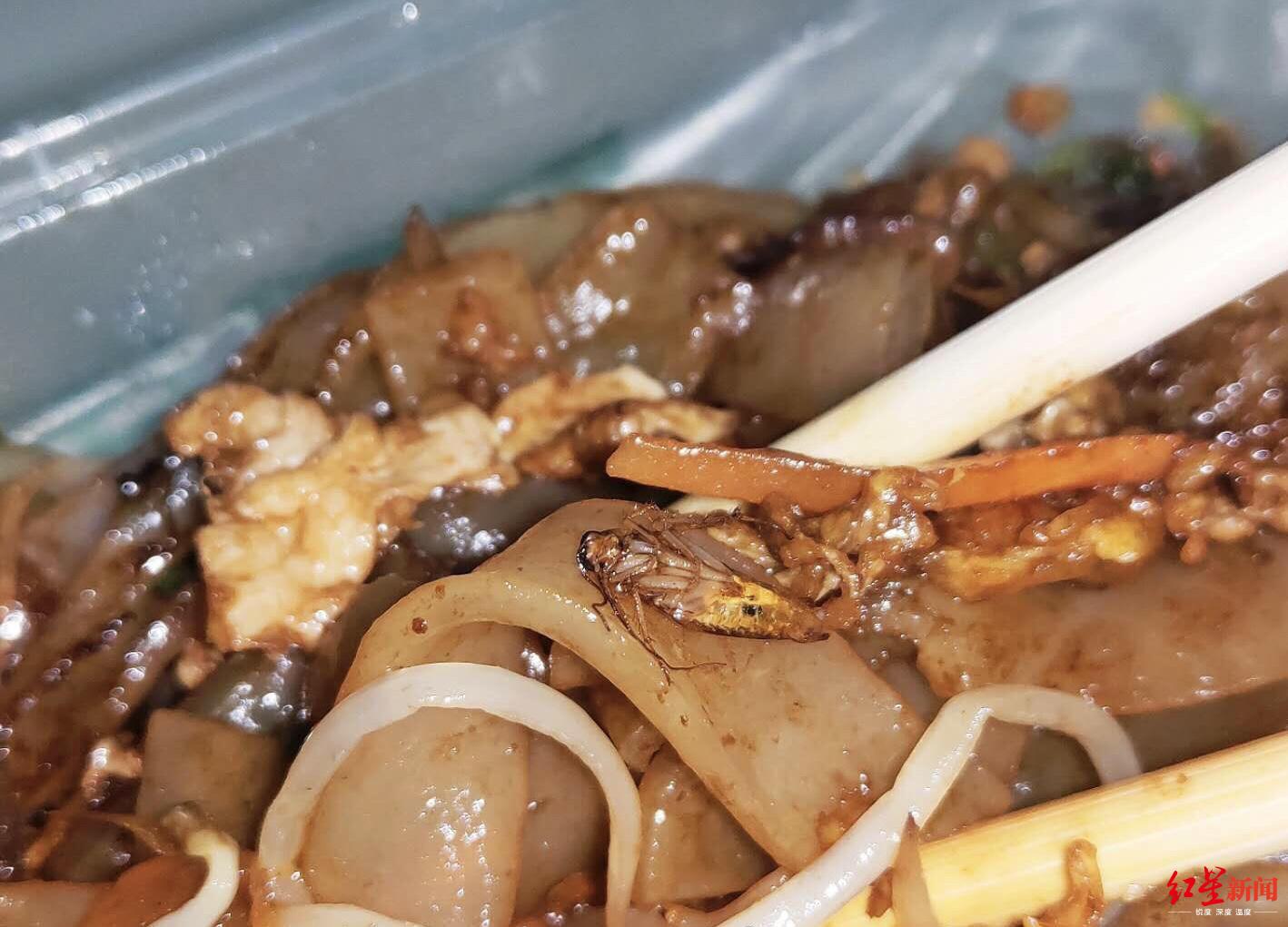 炒河粉吃出蟑螂