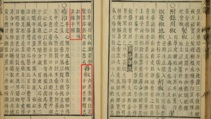 我国辣椒起源与早期传播考:起源山东,来自朝鲜半岛