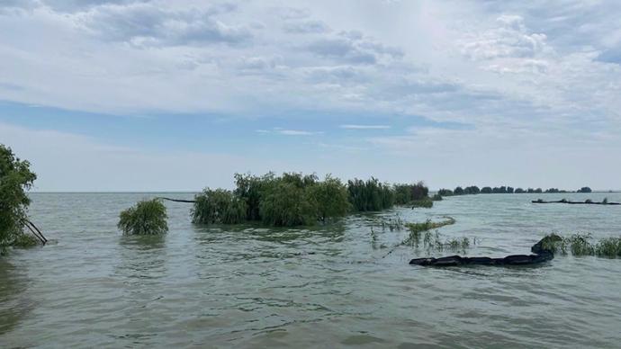 巢湖水位回落,安徽省委书记:把保巢湖作为防汛抗洪重中之重