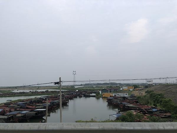 长江全面禁渔后,大堤旁水塘里弃置不用的渔船