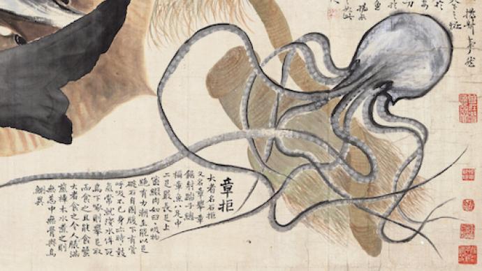 """清代赵之谦《异鱼图》的""""奇趣""""与海洋生物"""