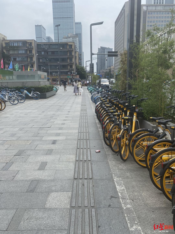 红星路二段,整齐有序停放的共享单车