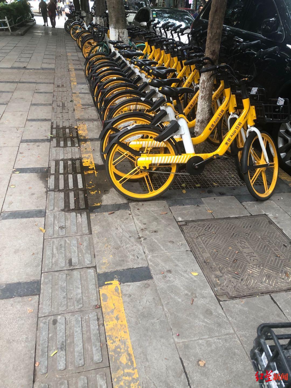 人民北路二段,有序停放的共享单车