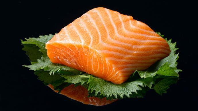 疫论·生态|三文鱼的驯养经济,与后新冠时代的多物种认识论