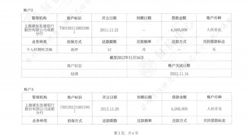程女士的个人征信报告,显示在银行借款共计1200万。来源:受访者。