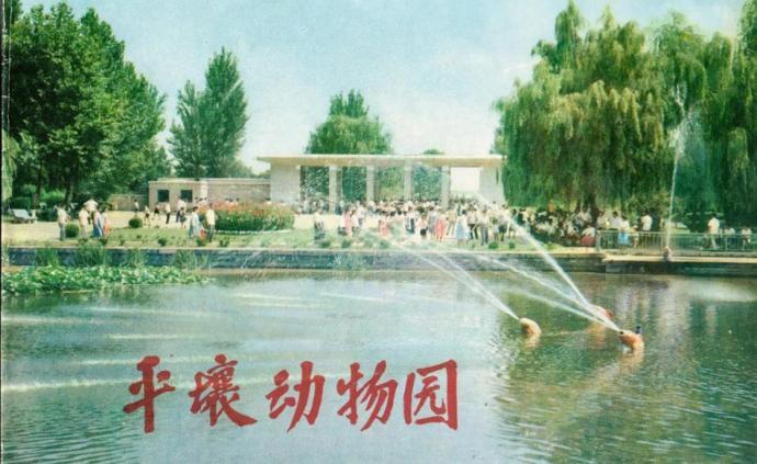 摄影好书|1973年朝鲜的《平壤动物园》