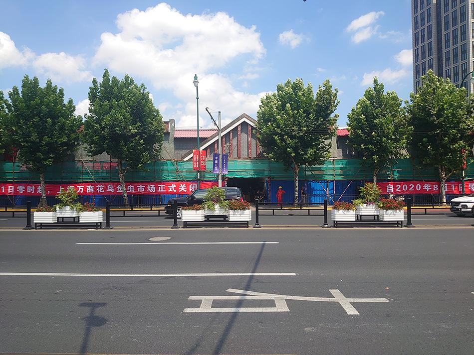 万商花鸟市场与8月1日零时正式关闭。 本文图片均为必威亚洲备用网新闻记者 李菁 实习生 沈惜羽 摄