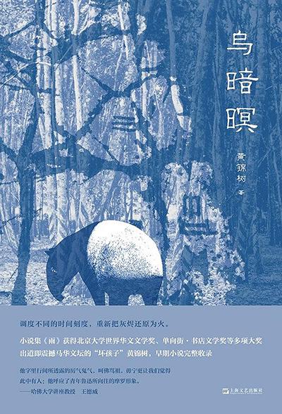 《乌暗暝》,黄锦树著,后浪︱上海文艺出版社2020年1月出版,480页,59.00元