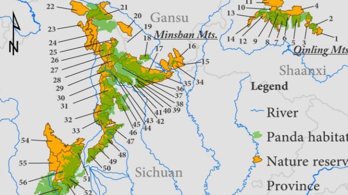 当大熊猫保护区的豹豺狼大幅消失,新的生态系统风险正在浮现