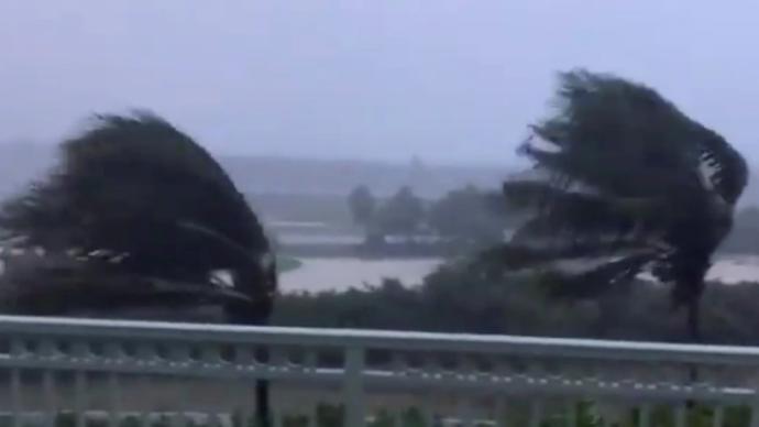 """飓风""""伊萨亚斯""""横扫美国东部,已致5死、超300万户断电"""