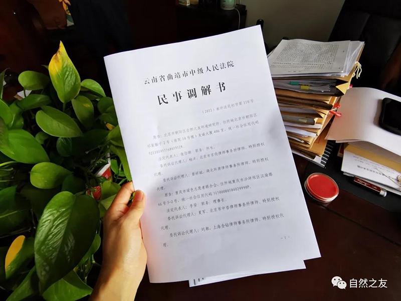"""2020年8月3日,云南省曲靖市中级人民法院将民事调解书送达至原告手中。 """"自然之友""""微信公众号 图"""