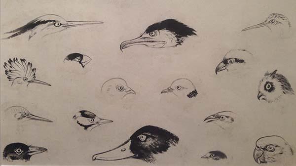 《花鸟画谱》局部,参与的画师为谢稚柳、唐云、张大壮、江寒汀等画师