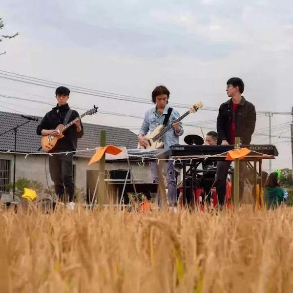2019年,乐队在稻田中演唱