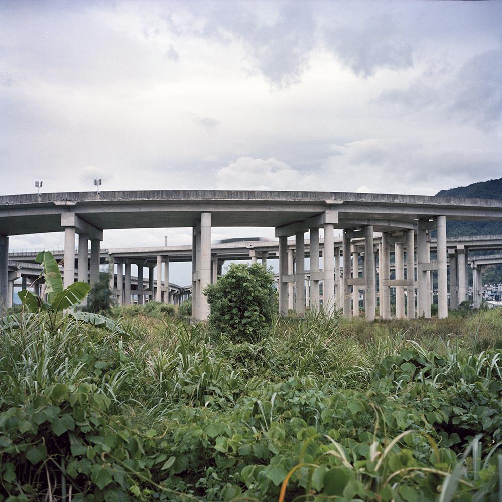 2019年8月,曾经的田野如今已经荒草丛生,后来建成的高架桥从田野上方横穿而过。