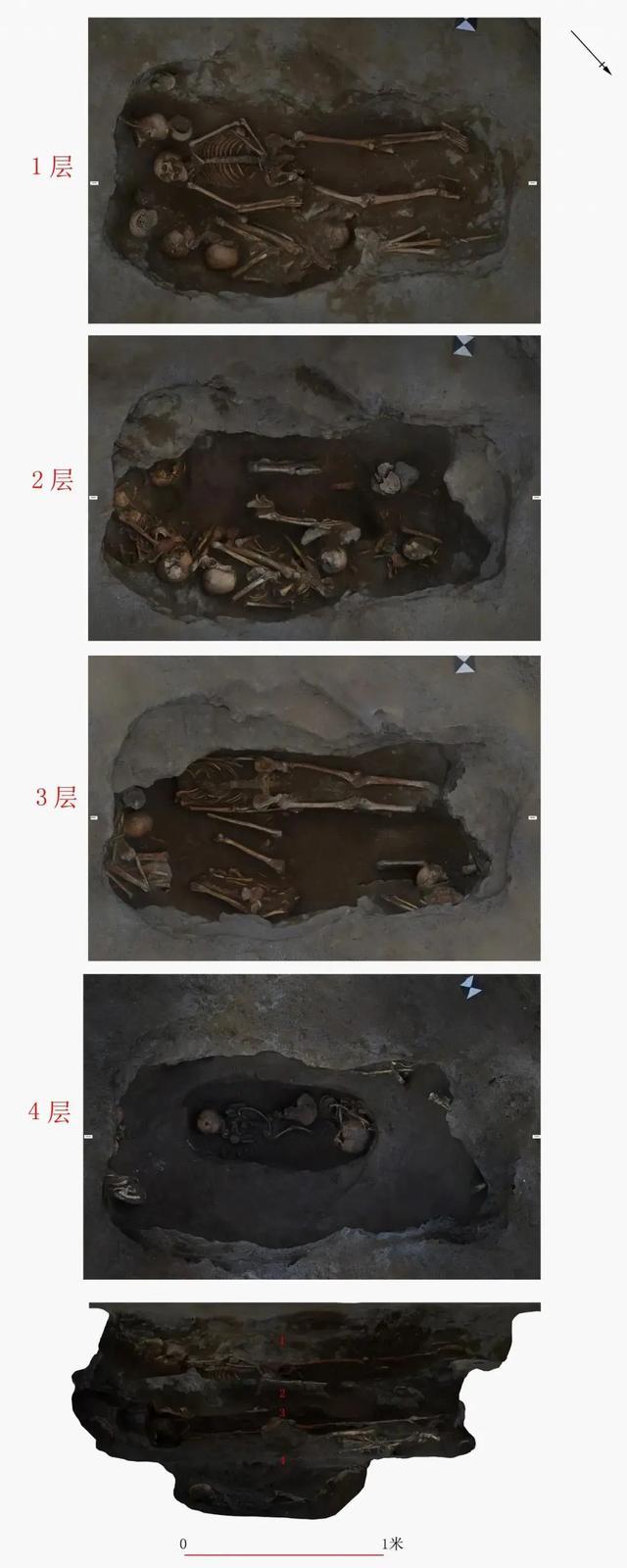 12号墓葬的分层埋葬
