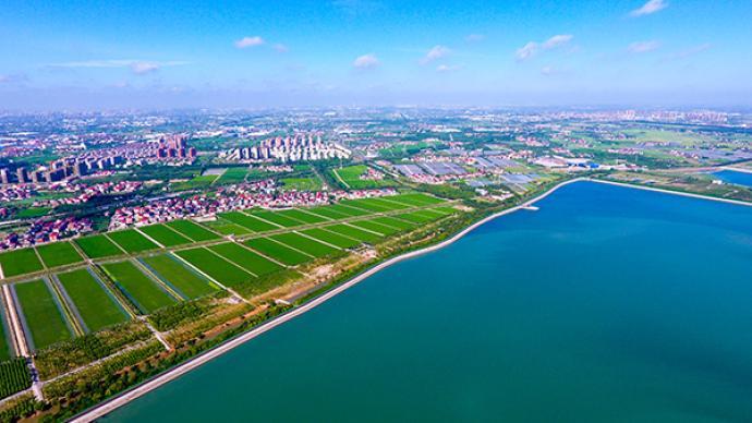 上海宝山不止有钢铁和邮轮,还有机器人和乡村田野生活