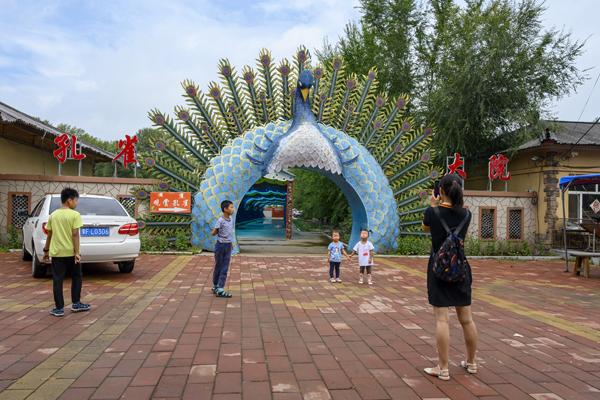 2020年8月,内蒙古兴安盟义勒力特嘎查,游客在孔雀大院外拍照留念。
