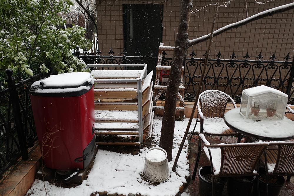 在小院儿一角的堆肥区,我放置了碧奥兰180L的有氧堆肥桶和一个木栅栏,用来暂时存放可堆肥的自家落叶和收集来的小区园艺垃圾。本文图片均由作者提供