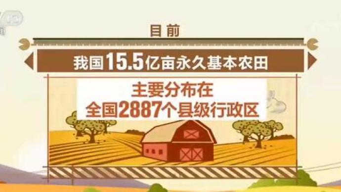 中國將建立國家永久基本農田數據庫,壓實保護耕地責任