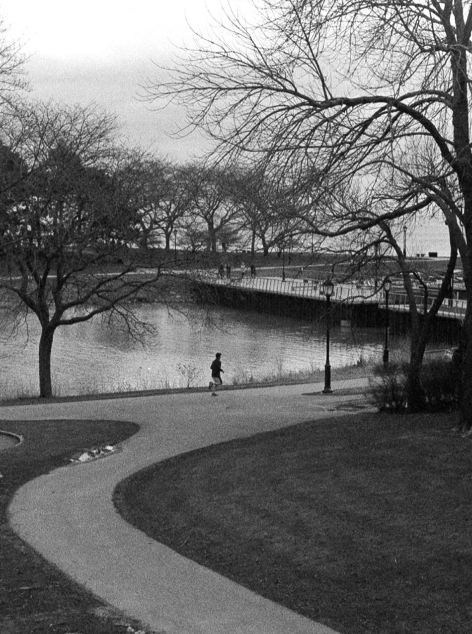 湖边晨跑的人。