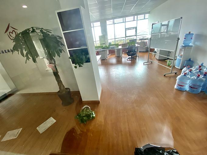 岚越公司办公地内部,文件和绿植散落一地。 澎湃新闻见习记者 巩汉语 图