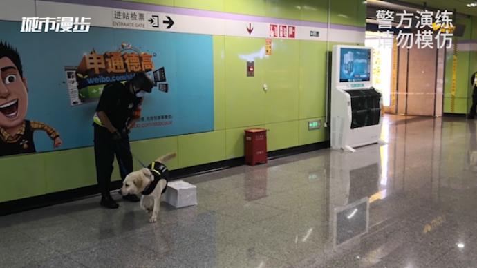 治安日常|地鐵站里的警犬