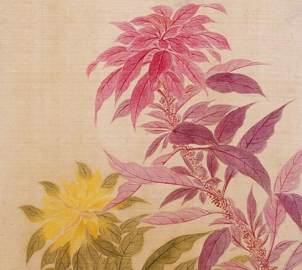 清 恽寿平 《花卉图册之雁来红》湖南省博物馆藏