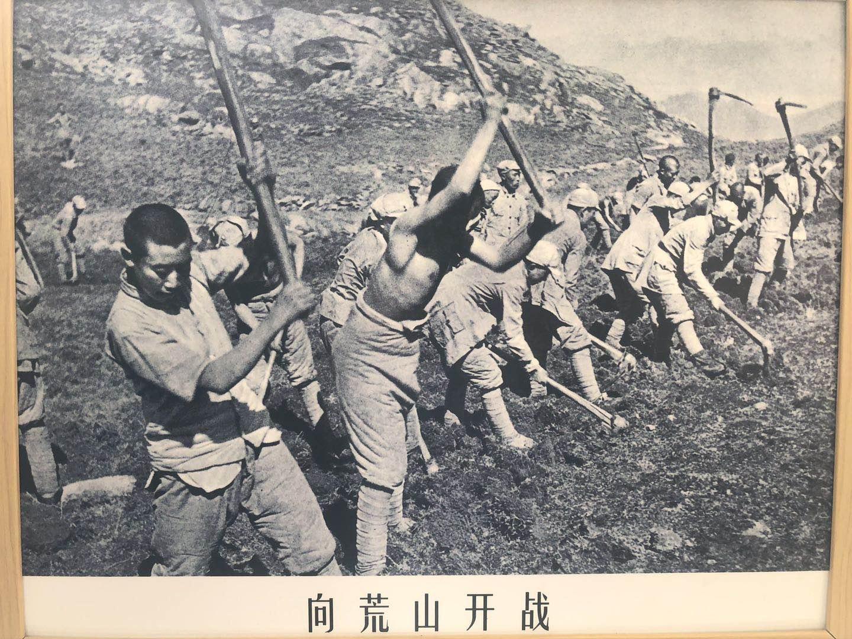 红军战士开垦荒山的老照片。