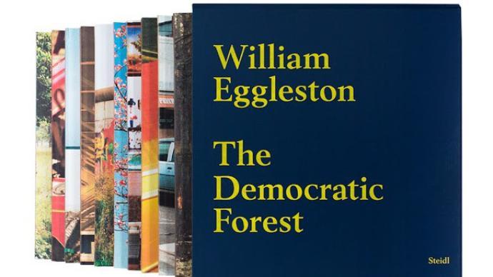 攝影好書|威廉?艾格萊斯頓《民主森林》:關于森林的隱喻