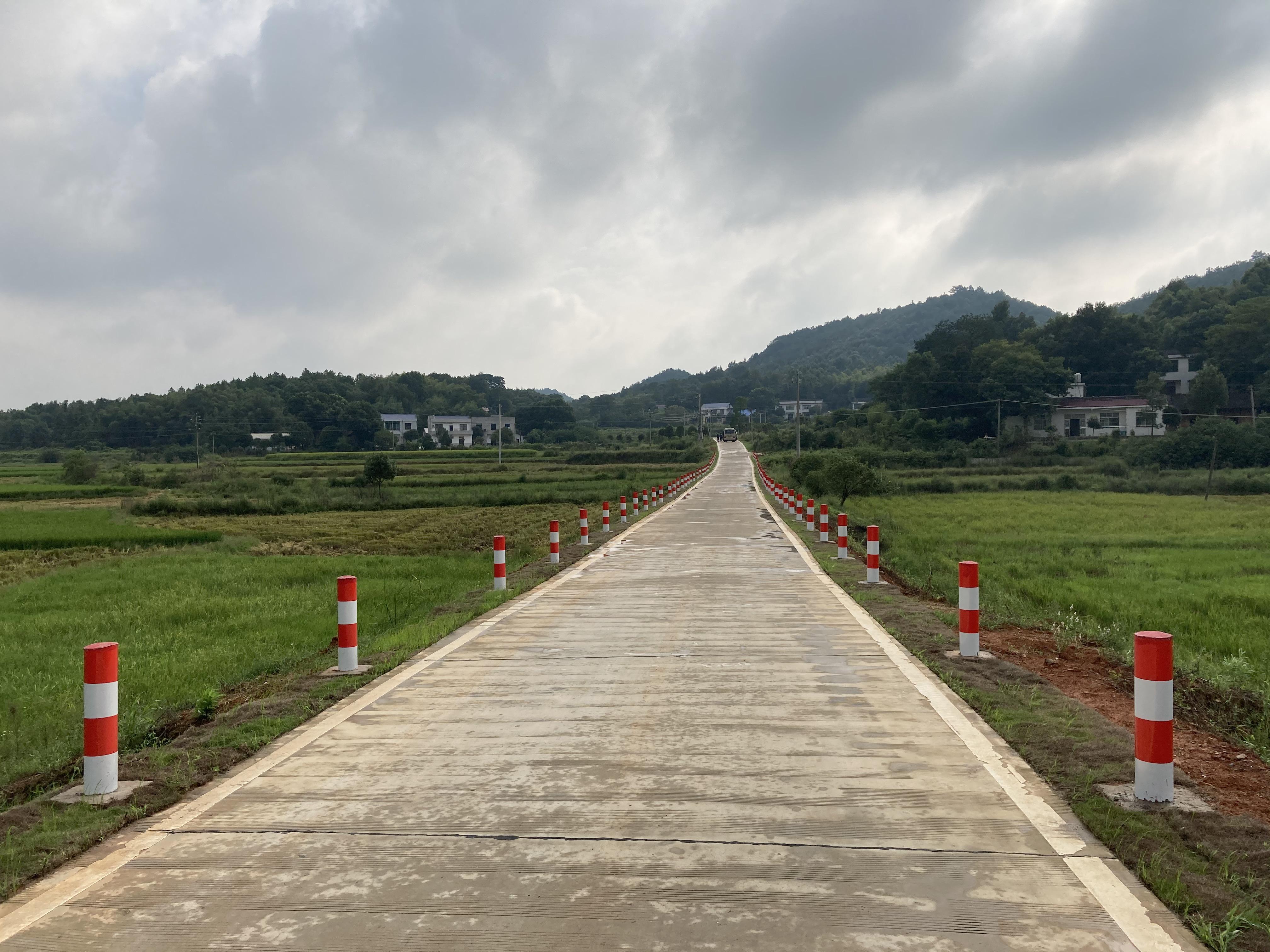 宁乡市道林镇的乡下公路 图 澎湃消休记者 张若婷