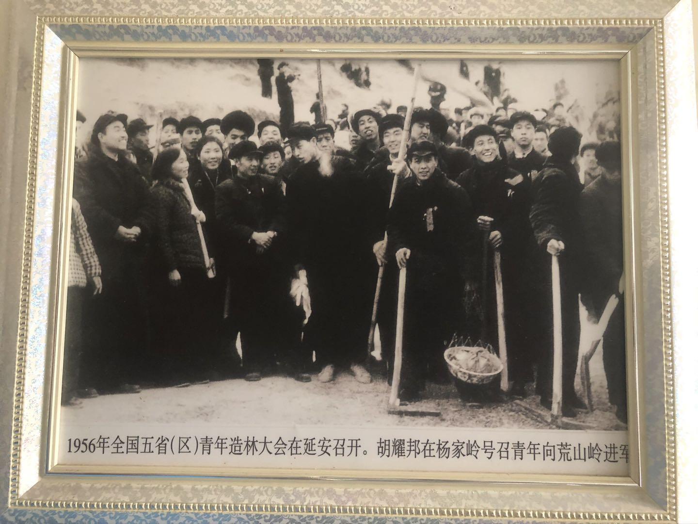 1956年五省区青年造林大会的老照片。