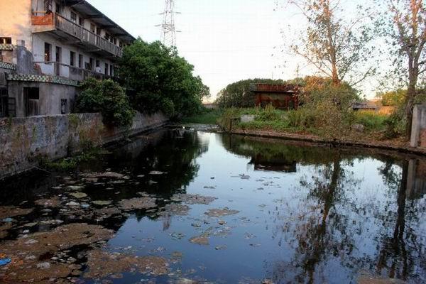 资西寺前放生池现状 胡迪军拍摄