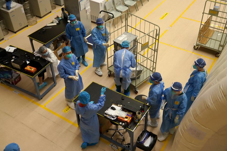 """9月12日,一批来自香港大会堂等检测中心的样本被送至""""火眼实验室""""进行检测。"""