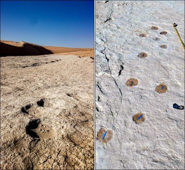 沙特阿拉伯文化部遗产委员会9月16日挑供的照片表现,在沙特阿拉伯泰布克地区发现12万众年前的古代人类和动物足迹。 新华社 图